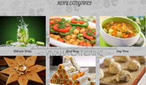 vivaha-catering-categories