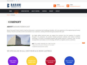 barani-website-design