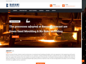 barani-website-design-b